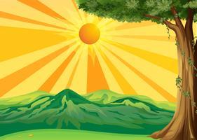 Uma visão do nascer do sol vetor