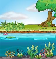 Terra e ambiente aquático vetor