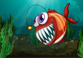Um peixe grande sob o mar