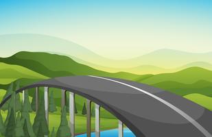 Uma estrada curva com pinheiros