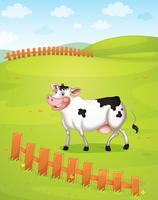 Vaca vetor