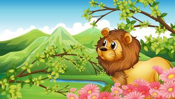 Um leão em uma vista para a montanha vetor