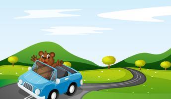 urso e carro vetor
