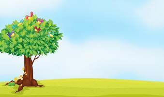 uma árvore e pássaros vetor