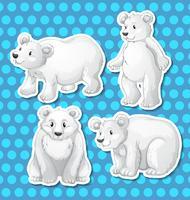 Urso polar vetor