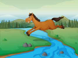 Cavalo atravessando o rio vetor