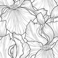 Padrão sem emenda floral. Fundo de gravura de íris de flor. vetor