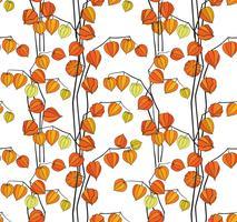 Fundo sem emenda do Physalis do teste padrão floral da queda. Florescer textura do jardim vetor