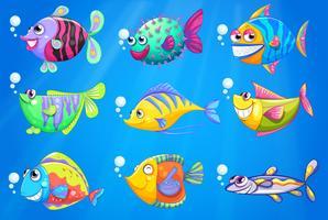 Nove peixes coloridos sob o mar vetor