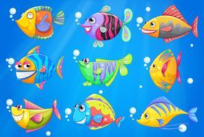Um oceano com nove peixes coloridos vetor
