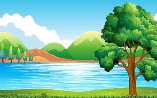 Lago e parque vetor
