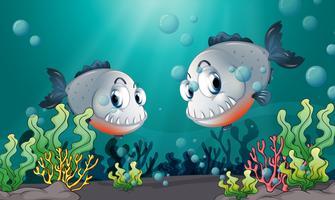 Dois grandes peixes cinzentos no fundo do mar vetor