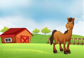 Um cavalo na fazenda vetor