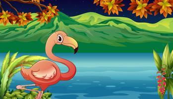 Um cisne e uma lagoa vetor
