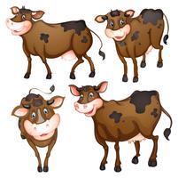 Vaca marrom vetor