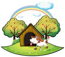 Um cachorro com uma casinha de cachorro perto de uma macieira