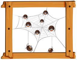 Muitas aranhas na web vetor