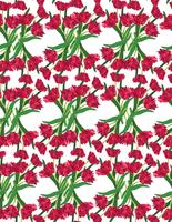 tulipas-fundo-2 vetor
