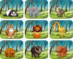 Conjunto de animais selvagens na floresta vetor