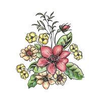 Buquê de flores. Quadro floral. Cartão de florescer. Decoração de verão
