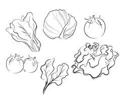 legumes desenho ilustração vetorial vetor