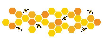 hexagon bee bee hive design arte e espaço de fundo