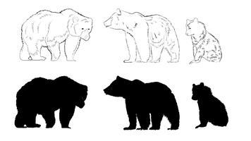 Silhueta de urso vetor