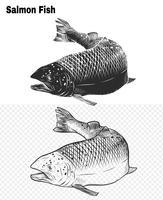 Arte de salmão altamente detalhada em estilo de arte de linha
