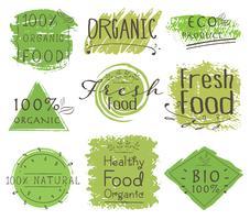 Grupo de produto da bandeira ECO, natural, vegetariano, alimento orgânico, fresco, saudável. Ilustração vetorial vetor