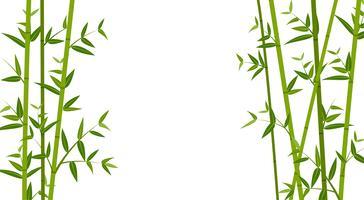 Ilustração em vetor de fundo verde modelo de bambu