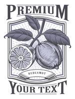 Rótulo vintage de vetor de bergamota