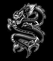 Dragão vetor