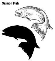 Vetor de peixe à mão de desenho