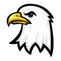Cabeça de desenho animado de águia vetor