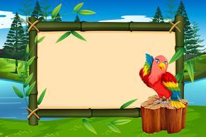 Papagaio no quadro de bambu vetor