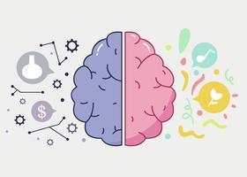Vetor de cérebro humano esquerdo e direito