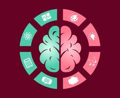 Hemisférios Cerebrais Humanos vetor