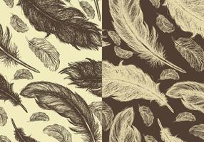 Pacote de padrões vetoriais de penas desenhados à mão sem costura