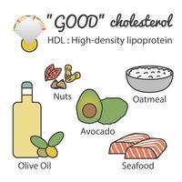 HDL em alimentos vetor