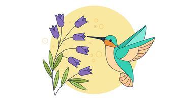 Vetor de beija-flor
