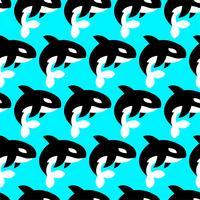 Ilustração de orca de baleia assassina vetor