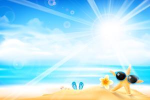 A estrela do mar está usando óculos de sol 001 vetor
