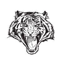 tigre linha arte vetorial ilustração