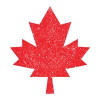 Logotipo de vetor Outono Maple Leaf