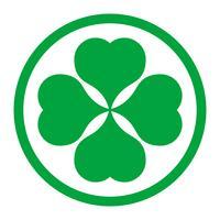 Trevo irlandês sorte para o dia de São Patrício vetor