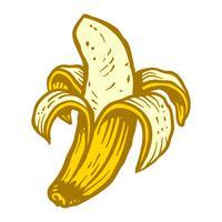 banana vetor