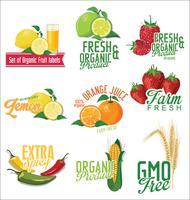 Conjunto de coleta de rótulos orgânicos de frutas e produtos hortícolas vetor