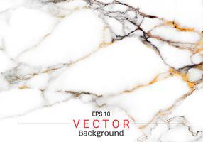 Textura de mármore branca abstrata, teste padrão do vetor usado para criar o efeito de superfície para seu produto do projeto.