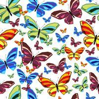 butterfly1 vetor
