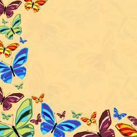 butterfly6 vetor